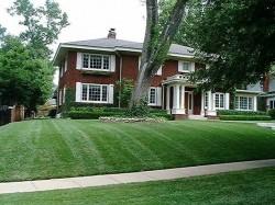 House Lawn