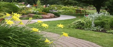 Imagine a Beautiful Yard…and the Time to Enjoy It!