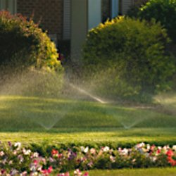 water sprinkler system