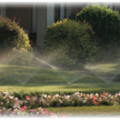 Tune-up Your Sprinkler System this Summer