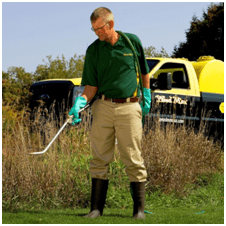 Get Rid of Unsightly Weeds in August & September