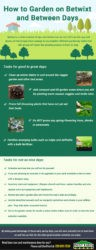 How to Garden on Betwixt and Between Days