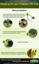 Best Aurora Gardening Services