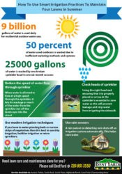 How to Use Smart Irrigation practices to maintain your lawns in Summer