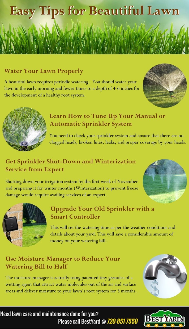 Lawn_tips
