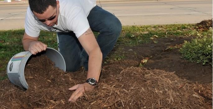 Gardening, Mowing, Lawn Care, Landscaping, Sprinkler Repair