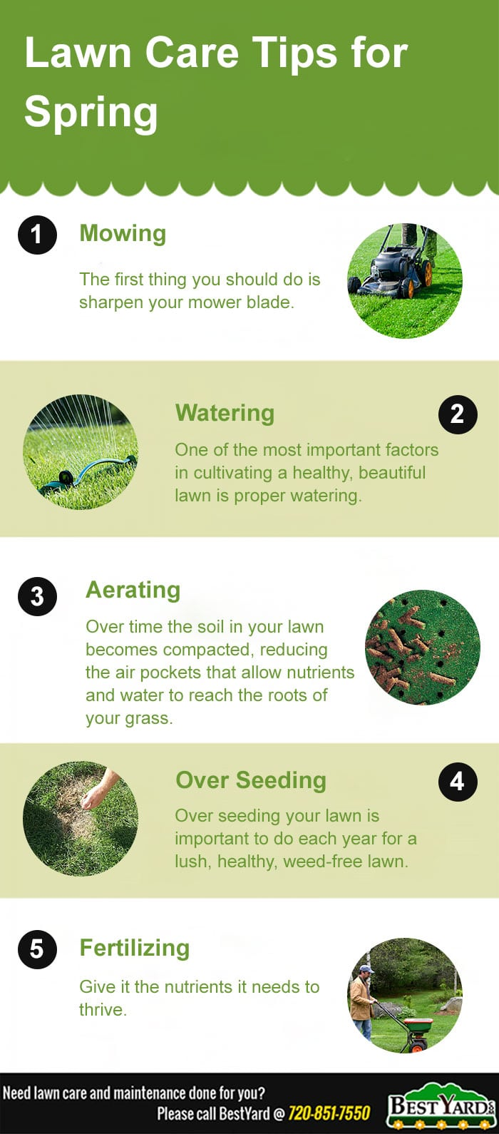 lawn care tips for this spring