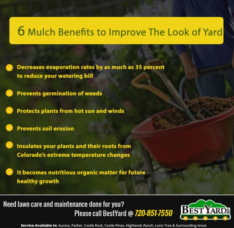 mulch benefits - Infographics
