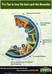 Bestyard infographic