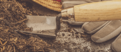 Ergonomic gardening tips