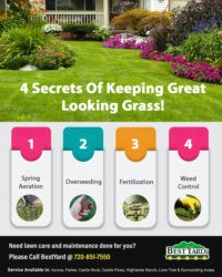 4 Secrets of Keeping Great Looking Grass!