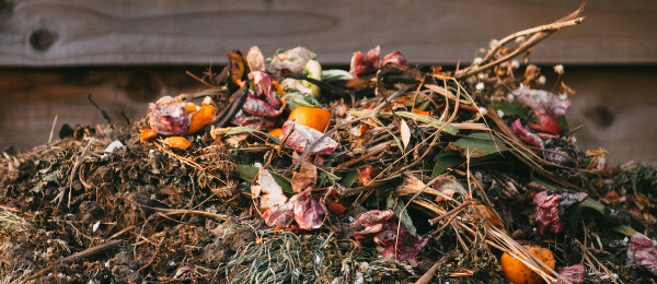 Compost now for spring
